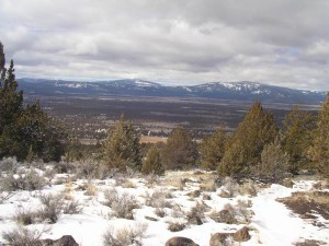 B.V. from Sheep Mt.